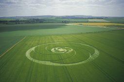 Windmill Hill, Wiltshire | 22nd June 2003 | Wheat L 35mm