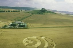 Woodborough Hill, Wiltshire | 14th July 2003 | Wheat  L3 35mm