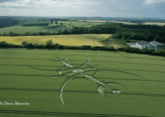 Clearbury Ring, nr Nunton, Wiltshire | 7th July 2015 | Wheat L5