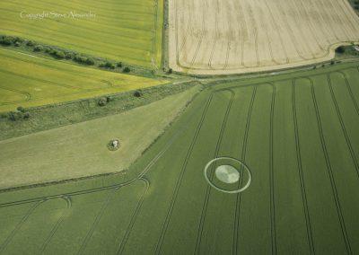 Devils Den, nr Fyfield, Wiltshire | 9th July 2015 | Wheat OH