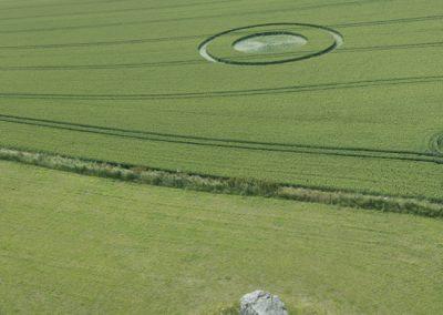 Devils Den, nr Fyfield, Wiltshire | 9th July 2015 | Wheat L