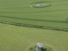 Devils Den, nr Fyfield, Wiltshire   9th July 2015   Wheat L