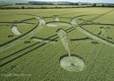 Clearbury Ring, nr Nunton, Wiltshire | 7th July 2015 | Wheat LOW3