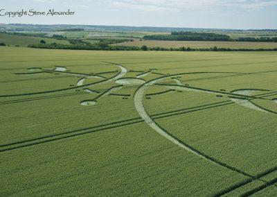 Clearbury Ring, nr Nunton, Wiltshire | 7th July 2015 | Wheat LOW