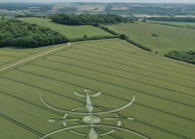 Clearbury Ring, nr Nunton, Wiltshire | 7th July 2015 | Wheat L2