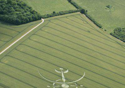 Clearbury Ring, nr Nunton, Wiltshire | 7th July 2015 | Wheat L6
