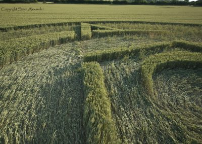 Rollright Stones, Oxfordshire | 15th July 2015 | Wheat LOW8