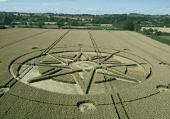 Haselor, Warwickshire | 19th June 2015 | Wheat L3