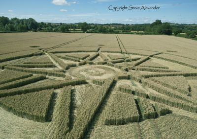 Haselor, Warwickshire | 19th June 2015 | Wheat LOW2
