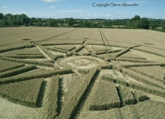 Haselor, Warwickshire | 19th June 2015 | Wheat LOW2