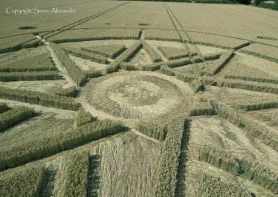 Haselor, Warwickshire | 19th June 2015 | Wheat CL