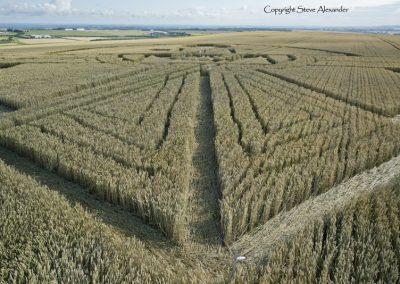 Uffcott Down, nr Barbury Castle, Wiltshire | 25th July 2015 | Wheat CL2