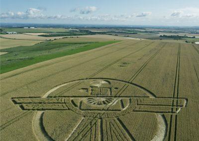 Uffcott Down, nr Barbury Castle, Wiltshire | 25th July 2015 | Wheat L