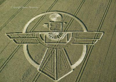 Uffcott Down, nr Barbury Castle, Wiltshire | 25th July 2015 | Wheat OH2