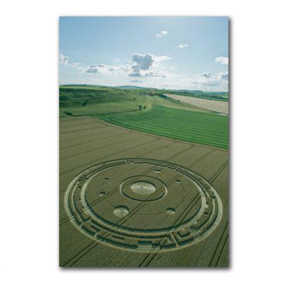 Maiden Castle, Dorset | 26th July 2015 | Wheat