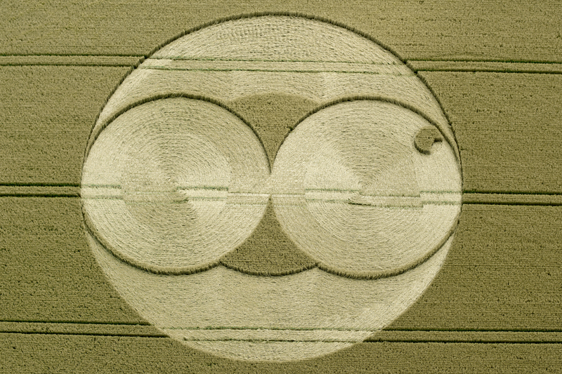 Crop circle research papers