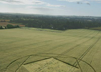 Etchilhampton, Wiltshire | 4th August 2015 | Wheat L