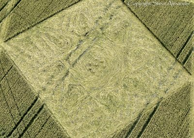 Etchilhampton, Wiltshire | 4th August 2015 | Wheat CL