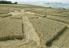Ox Drove, nr Bowerchalke, Wiltshire | 8th August 2015 | Wheat LOW2
