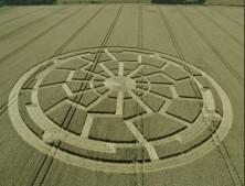 Ox Drove, nr Bowerchalke, Wiltshire   8th August 2015   Wheat L2