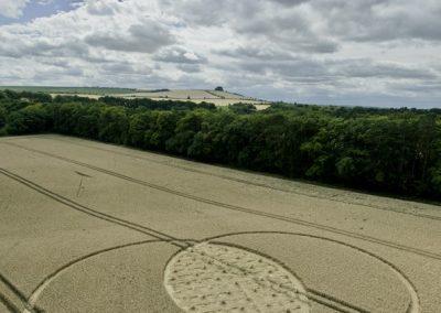 Fox Hill, nr Liddington, Wiltshire | 9th August 2015 | Wheat L2