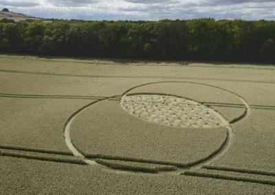 Fox Hill, nr Liddington, Wiltshire | 9th August 2015 | Wheat L4