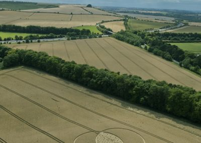 Fox Hill, nr Liddington, Wiltshire | 9th August 2015 | Wheat L5