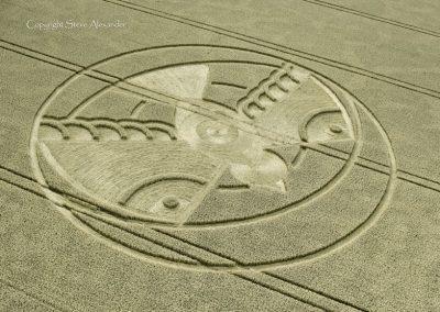 Hampton Lucy, nr Stratford upon Avon, Warwickshire   8th August 2015   Wheat OH4