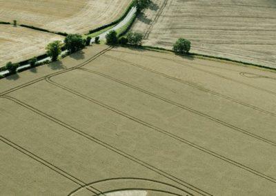 Hampton Lucy, nr Stratford upon Avon, Warwickshire | 8th August 2015 | Wheat L2