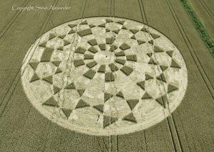 Etchilhampton 2, nr Devizes, Wiltshire   19th August 2015   Wheat OH2