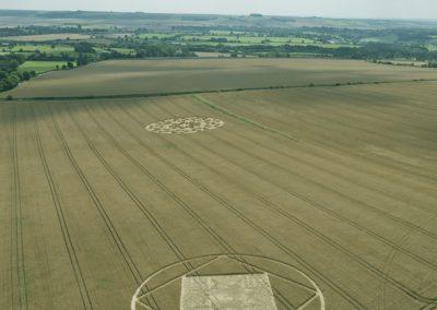 Etchilhampton 2, nr Devizes, Wiltshire | 19th August 2015 | Wheat LBO