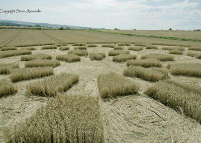 Etchilhampton 2, nr Devizes, Wiltshire | 19th August 2015 | Wheat D3