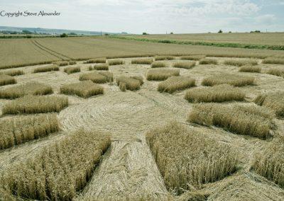 Etchilhampton 2, nr Devizes, Wiltshire | 19th August 2015 | Wheat D4