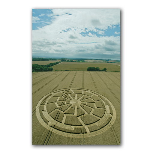 mysterious crop circles essay