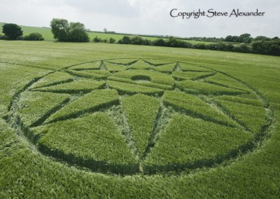 Willoughby Hedge, nr Mere, Wilts | 5th June 2016 | Barley Low