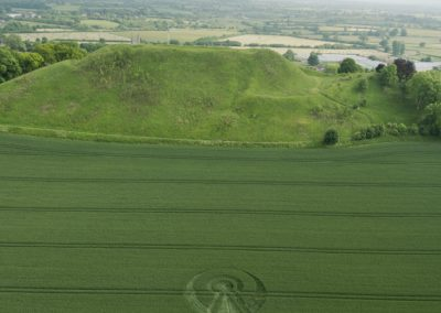 Castle Hill, Mere, Wilts | 6th June 2016 | Wheat LC