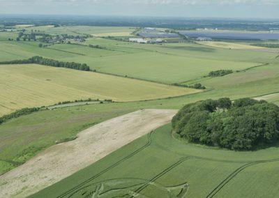 The Ridgeway, nr Hackpen Hill, Wilts   23rd June 2016   Wheat L2