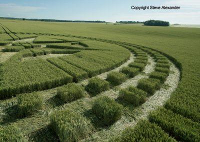 Stonehenge, Wilts | 7th July 2016 | Wheat Low2
