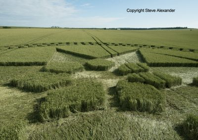 Stonehenge, Wilts | 7th July 2016 | Wheat Low4