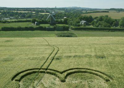 Wilton Windmill, Wilts   15th July 2016   Barley L