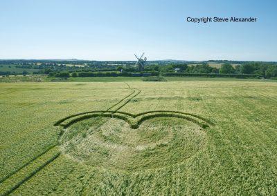 Wilton Windmill, Wilts   15th July 2016   Barley L2