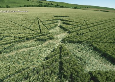 Hackpen Hill (2), Wilts |16th July 2016 | Wheat Low3