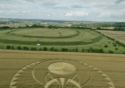 Figsbury Ring, Wilts | 22nd July 2016 | Wheat L41