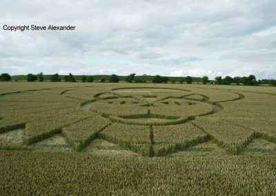 Figsbury Ring, Wilts | 22nd July 2016 | Wheat Low