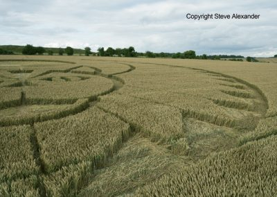 Figsbury Ring, Wilts | 22nd July 2016 | Wheat Low2