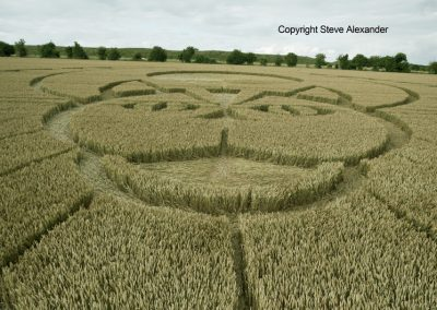 Figsbury Ring, Wilts | 22nd July 2016 | Wheat Low4