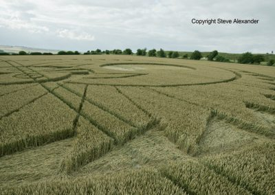 Figsbury Ring, Wilts | 22nd July 2016 | Wheat Low10