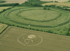 Figsbury Ring, Wilts | 22nd July 2016 | Wheat L3