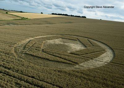 Matterley Basin,  Winchester, Hants   25th July 2016   Wheat L2