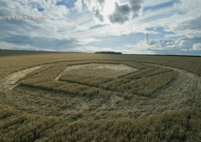 Matterley Basin,  Winchester, Hants   25th July 2016   Wheat Low